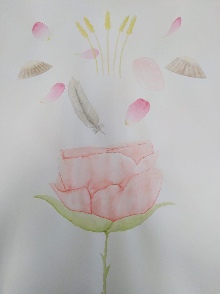 dessin rose, blé, plumes, coquillages, pétales