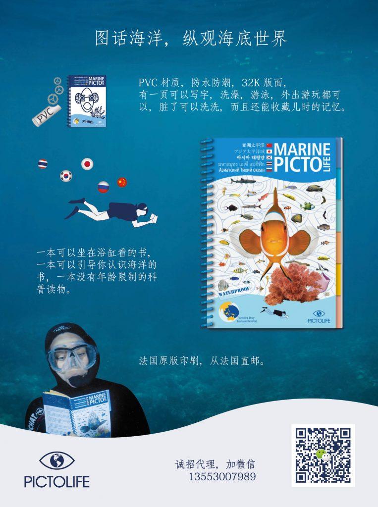 flyer avec texte en chinois