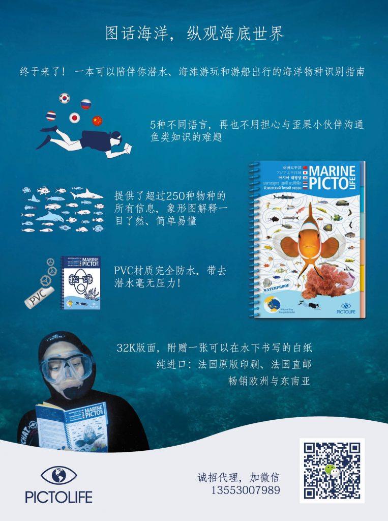 flyer avec du texte en chinois